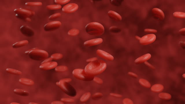 vídeos de stock e filmes b-roll de 3d rendering microscopic motion graphic of red blood cell background - veia humana