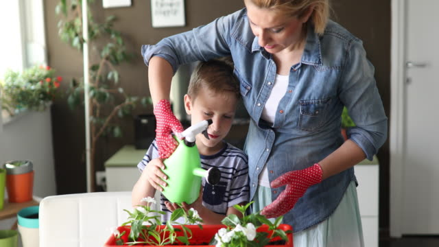 Repotting for summer Mother is repotting flower with her kid potted plant stock videos & royalty-free footage