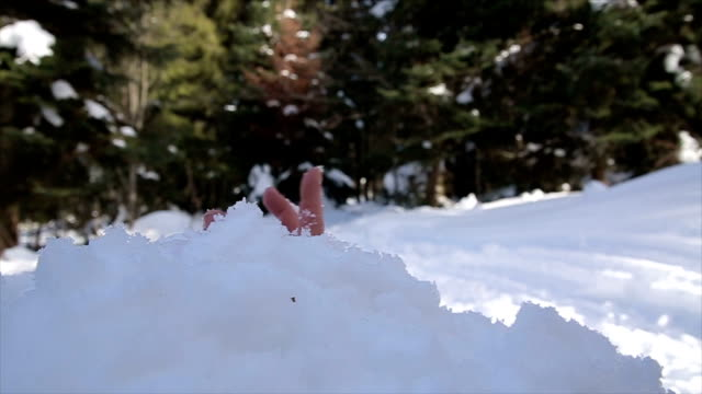 Rescue from a snowy avalanche,b roll Rescue from a snowy avalanche,b roll rescue worker stock videos & royalty-free footage