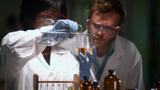 Research scientists in lab video