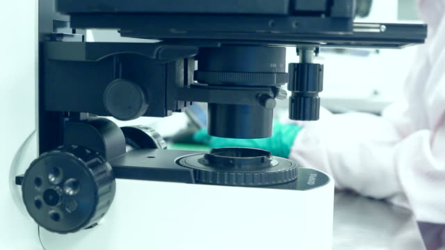Researchers using a microscope in laboratory