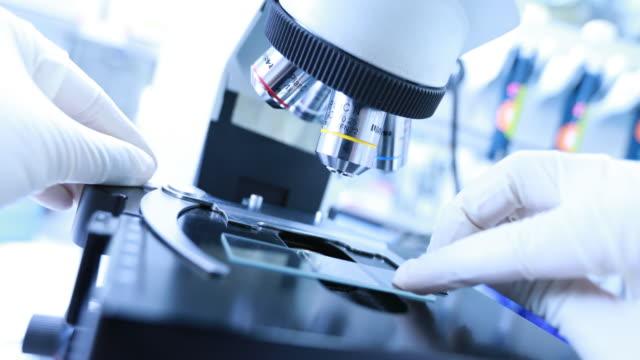 Researchers using a microscope in laboratory video