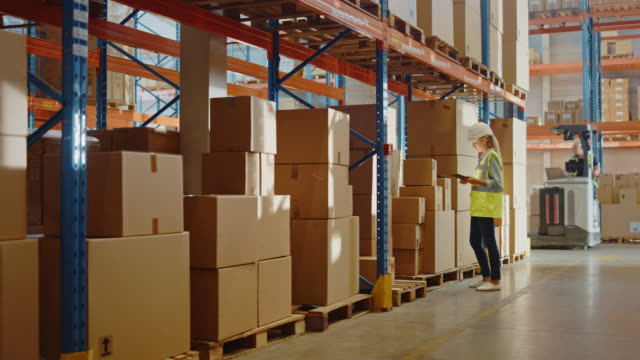 Retail Warehouse full of Shelves with Goods in Cardboard Boxes, Female Worker Scans and Sorts Packages for Delivery. In Background Loaders Move Products with Forklifts. Distribution Logistics Center