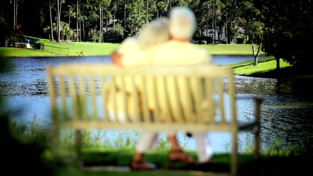 Retired Couple Enjoying a Peaceful Retirement Outdoors video