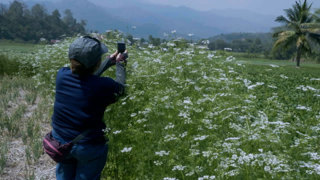 retirement grandmother takes photos the park - 60 69 anni video stock e b–roll