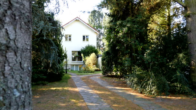 vídeos de stock e filmes b-roll de reveal of small, secluded house, home, pine trees, driveway - isolated house, exterior