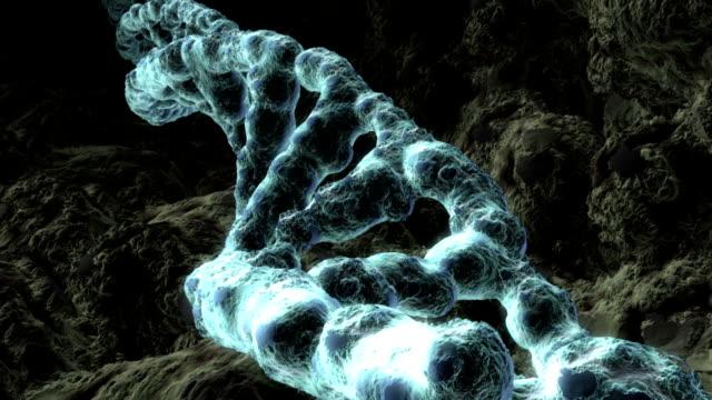 Revolving DNA strand. Flight through animation video