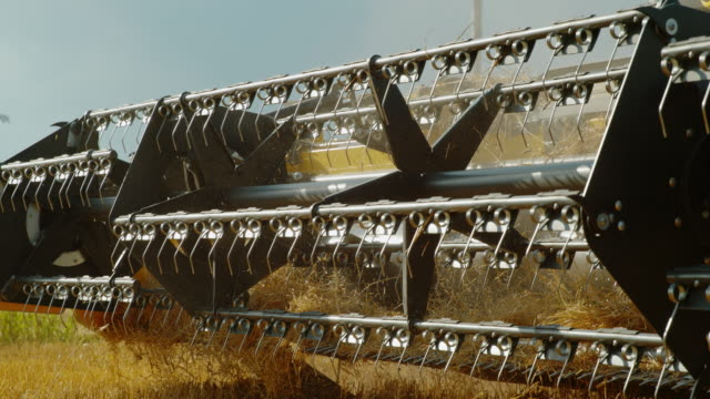 slo mo revolving reel of a combine harvesting wheat - agricultural machinery stock videos & royalty-free footage