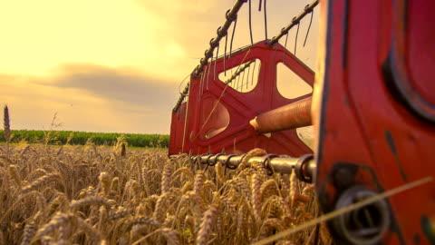 slow motion rotante in bobina di una combinazione di testa - agricoltura video stock e b–roll