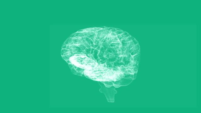 Revolving transparent human brain graphic video