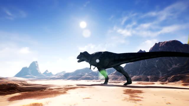 Animation de dinosaure Tyrannosaure Rex T dans le désert. rendu réaliste. 4k - Vidéo