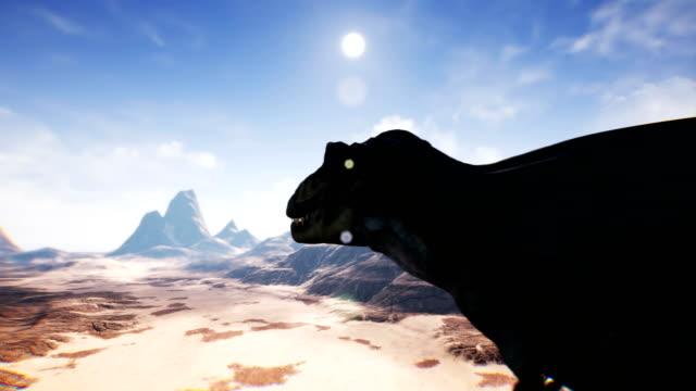 t rex tyrannosaur dinosaurie animation i öknen. realistiska render. 4k - tyrannosaurus rex bildbanksvideor och videomaterial från bakom kulisserna