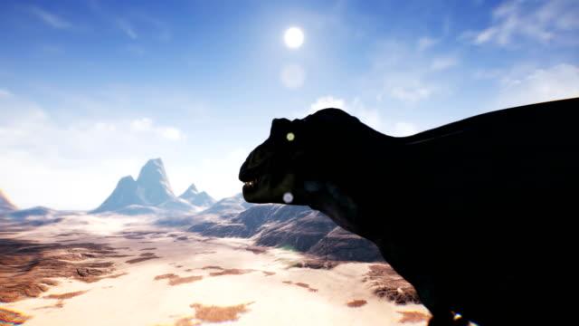 stockvideo's en b-roll-footage met t-rex tyrannosaur dinosaur animatie in woestijn. realistische render. 4k. - reus fictief figuur