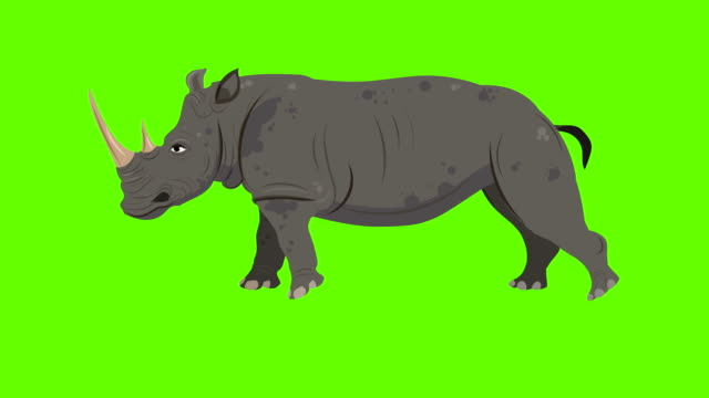 Rhinoceros Run cycle animation
