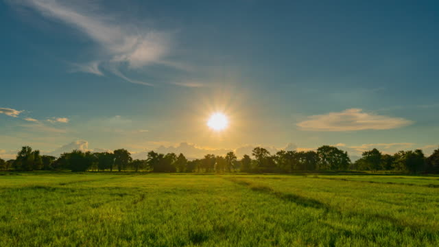 rice field and sunset in chiang mai, thailand : 4k time lapse. - sunset stock videos & royalty-free footage