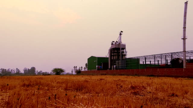 rice mill factory, india - haryana video stock e b–roll