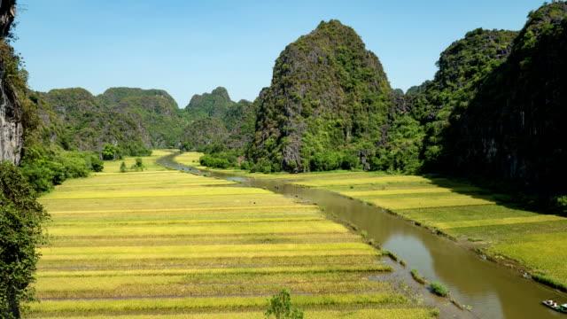 reisfelder und river in ninh binh vietnam - hoa lu stock-videos und b-roll-filmmaterial
