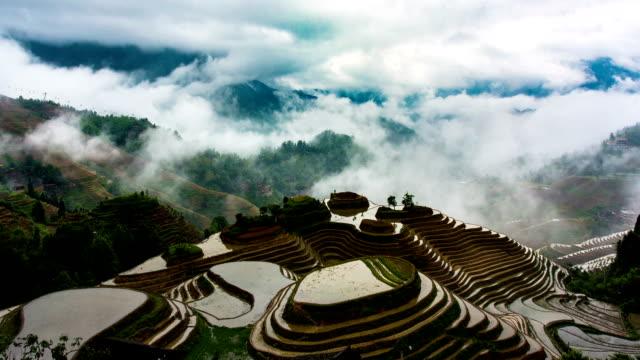 pole ryżowe w longsheng - taras ryżowy filmów i materiałów b-roll