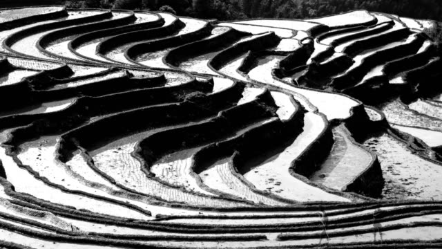 Rice terraces are plowing on high mountains 4K Time Lapse video