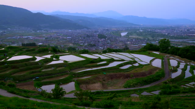 rice terraces (tanada) at dusk,obasute,nagano - taras ryżowy filmów i materiałów b-roll
