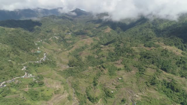 Rice terraces in the mountains. Philippines, Batad, Banaue Aerial view of rice terraces on the slopes of the mountains, Banaue, Philippines. Rice cultivation in the North Batad. Mountains covered forest, trees. Philippine Cordilleras. banaue stock videos & royalty-free footage