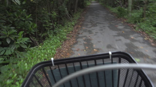 Ride Bicycle On Country Road