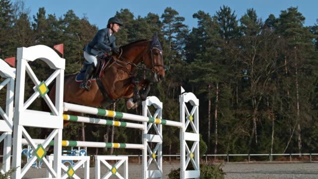hastighet ramp rider hoppa en oxare på hennes häst i solsken - häst tävling bildbanksvideor och videomaterial från bakom kulisserna