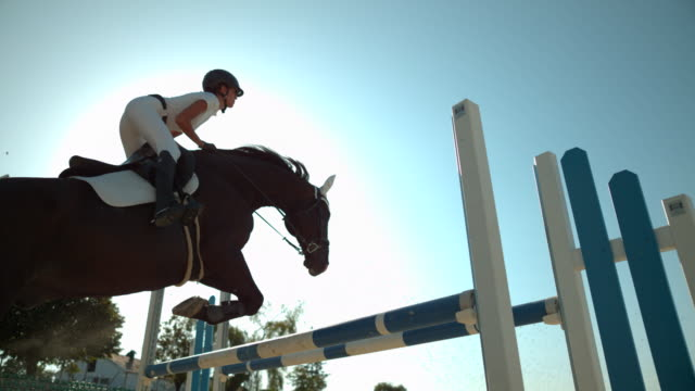 Riding a horse over an obstacle, Ultra Slow Motion