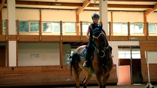 hd :馬の乗馬 - 動物に乗る点の映像素材/bロール