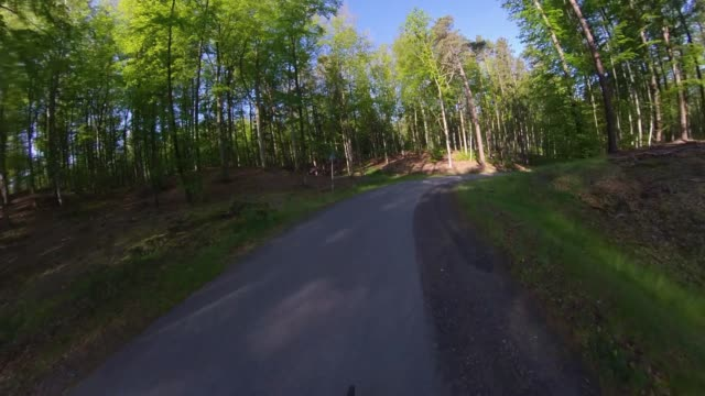 Riding Bicycle on Asphalt Road in Forest on Sunny Day Wide Angle POV