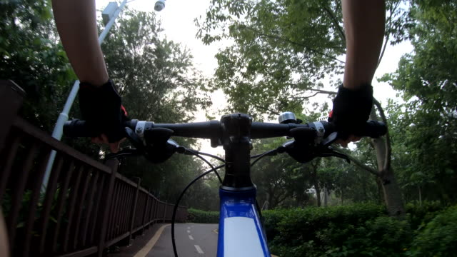 Riding bike on bicycle path in park, View from first person perspective POV - Point of view front  by action camera Riding bike on bicycle path in park, View from first person perspective POV - Point of view front  by action camera handlebar stock videos & royalty-free footage