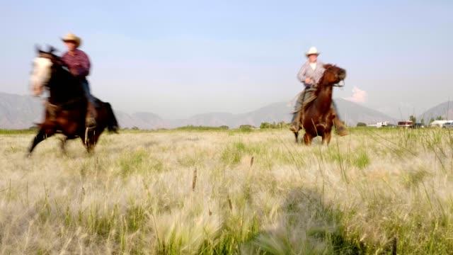 高速馬に乗ってください。 - 動物に乗る点の映像素材/bロール
