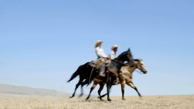 riding fast horses - rancher video stock e b–roll