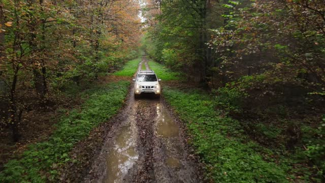 Lviv, Ukraine - October 17, 2020: riding suv car by forest trail road Lviv, Ukraine - October 17, 2020: riding suv car by forest trail road autumn season branch plant part stock videos & royalty-free footage
