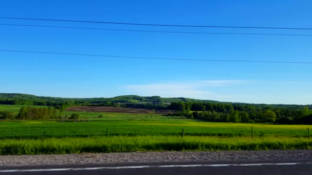 Right Side View Driving by Rural Farmland in Day.  Driver Point of View POV Driving Past Countryside Farm Landscape