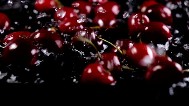 Ripe cherry berry falls into the water on a dark background. Slow motion Ripe cherry berry falls into the water on a dark background. Slow motion. cherry stock videos & royalty-free footage