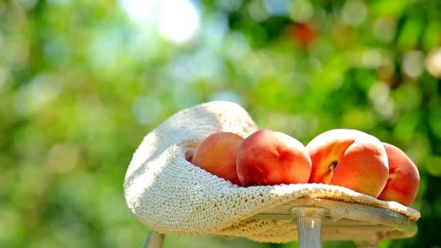 Ripe peaches. video