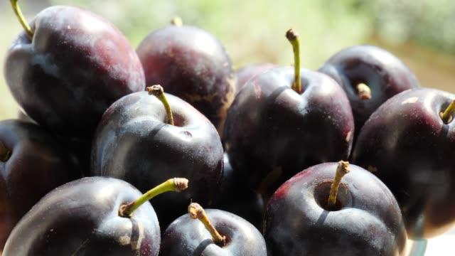 vídeos de stock, filmes e b-roll de a fruta madura das ameixas fecha-se acima - fruit salad
