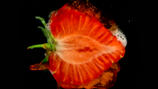 Ripe strawberry being squashed in fine detail showing fresh juice squirting out. Fantastic healthy food background filmed in slow motion video