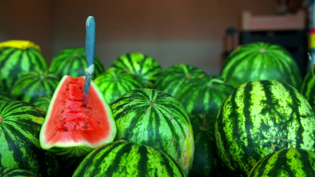 Image result for watermelon hd