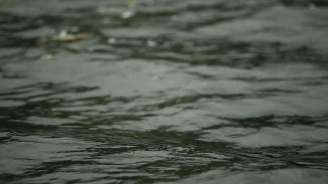 vidéos et rushes de ondulations sur dark water - nord