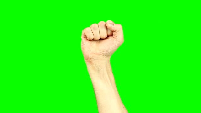 rising fist sign gesture hand on green screen. hummer fist motion of hand. simbol of unity solidarity feminist salute strength defiance support. footage contains solid green instead alpha channel. - pugno video stock e b–roll