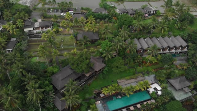 Rising up Aerial view of luxury hotel with straw roof villas and pool in tropical jungle, palm trees, rice fields. Luxurious villa, pavilion in forest, Ubud, Bali