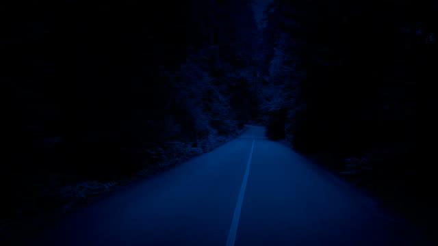 in der nacht aufsteigen durch bäume über forststraße - vancouver kanada stock-videos und b-roll-filmmaterial