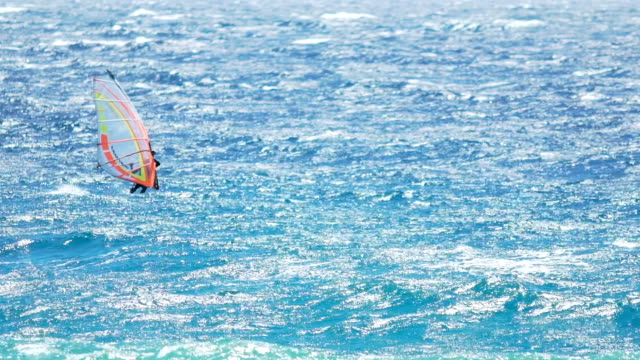 Risky windsurfing, athletic man gliding across azure ocean, exciting experience video