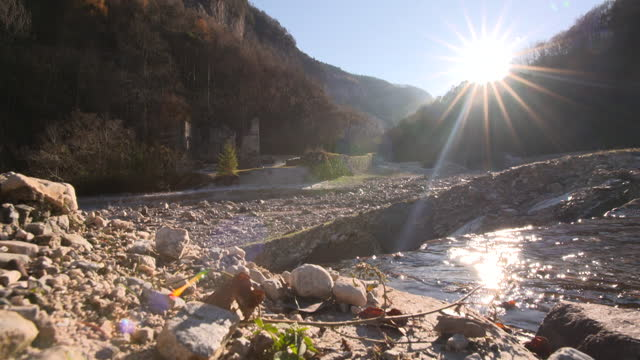 River at sunshine