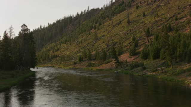 River at Yellowstone. video