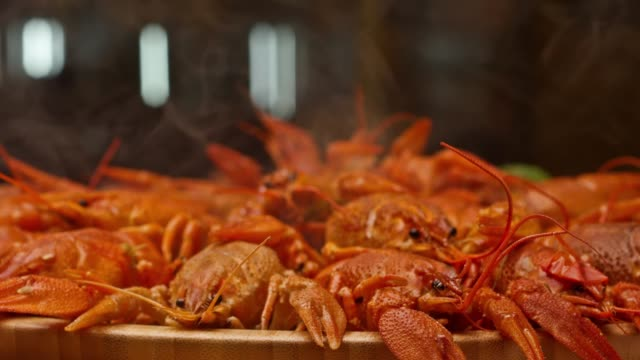 River boiled crayfish a good snack to beer. Waiter puts on the table a plate of boiled red river cancer . A plate of  fuming or smoking hot crawfish in the restaurant. Shot on RED Camera Slow motion.