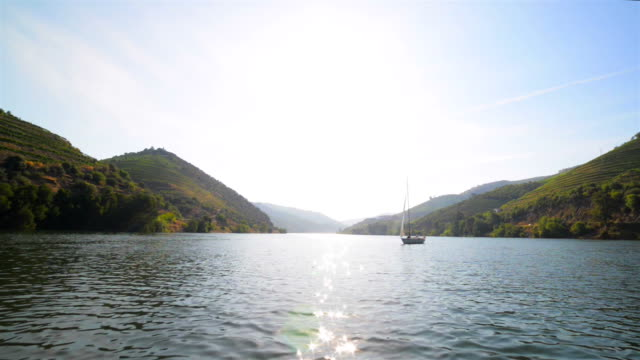 stockvideo's en b-roll-footage met cruisen langs de douro rivier - portugal
