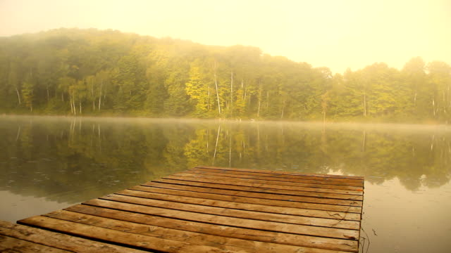 river dock in morning mist - lakes stock videos and b-roll footage